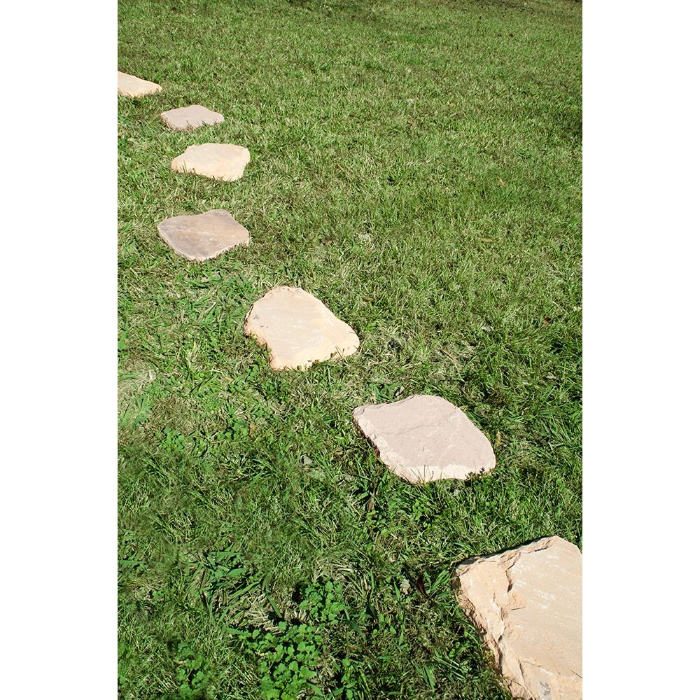 Rustic Canyon Stepping Stone 12X18 Hand Cut Natural
