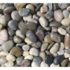 Mixed Polished 2-3 CM Beach Pebbles